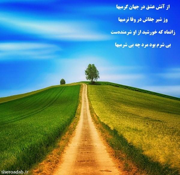 مشهورترین سروده های مولانا