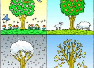 شعرهای کودکانه درباره چهار فصل سال